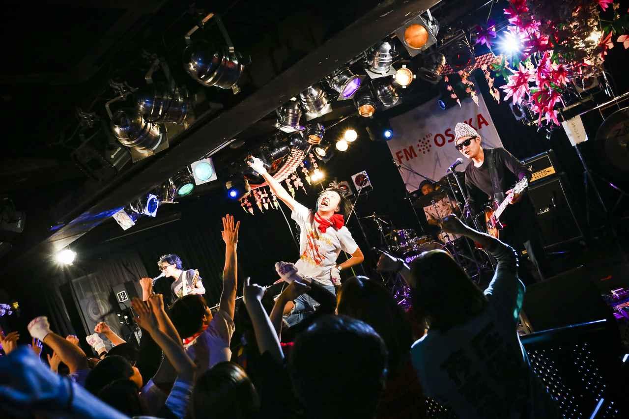 画像3: photo by オイケカオリ