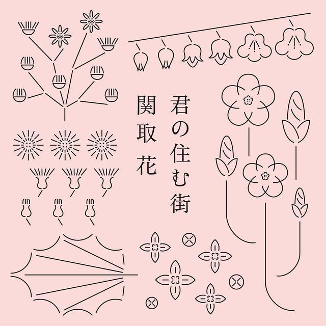 画像1: 関取花さん2週目