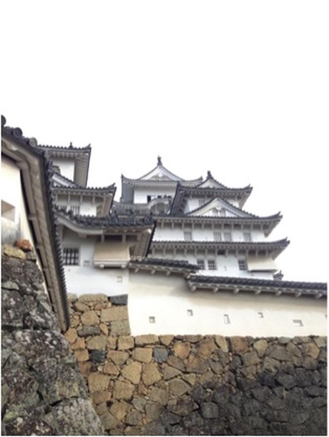 画像: 兵庫県 / 港のおかん さん