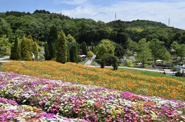 画像: 広島県 / ちっぷさん