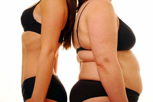 """画像: """"BMAL1""""の量と脂肪の関係性"""