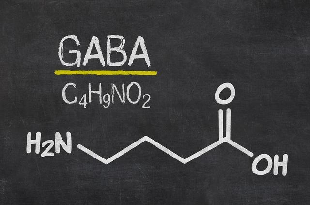 画像: 玄米酵素に含まれる「ギャバ」