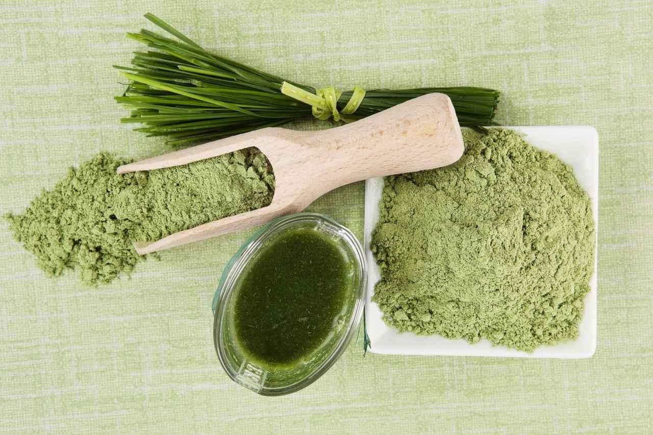 画像: 青汁の緑③ 大麦若葉