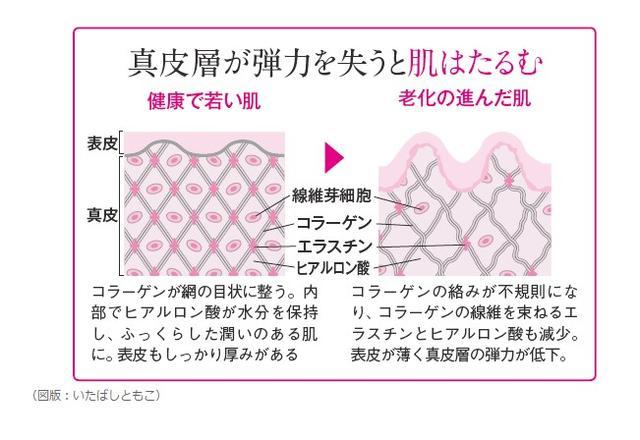 画像: www.saishunkan.co.jp