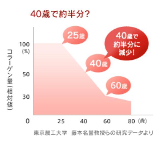 画像: www.nip-col.jp