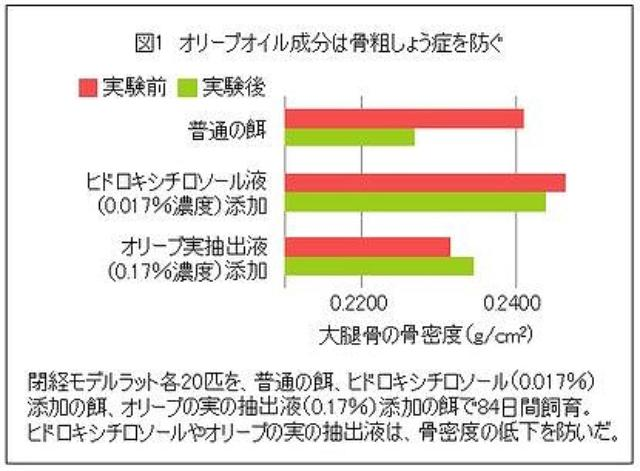 画像: www.kenbi-navi.jp