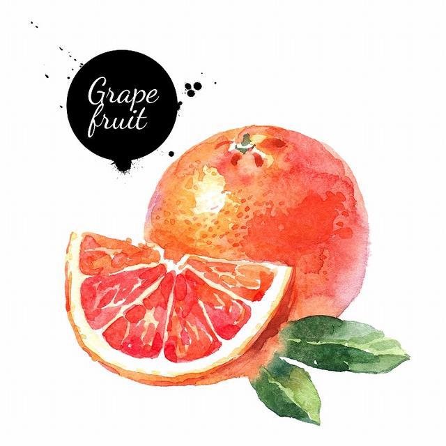 画像: 脂肪燃焼も促す「グレープフルーツ」