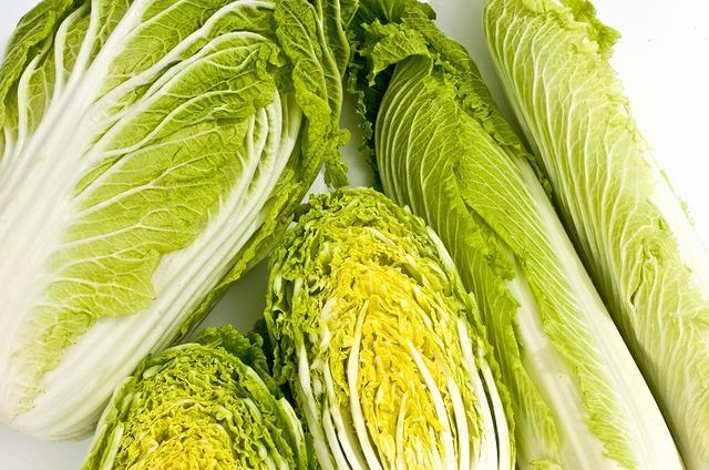 画像: 白菜は栄養がなさそう…