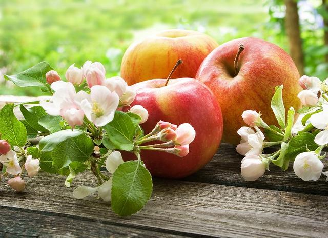 画像: ② りんご