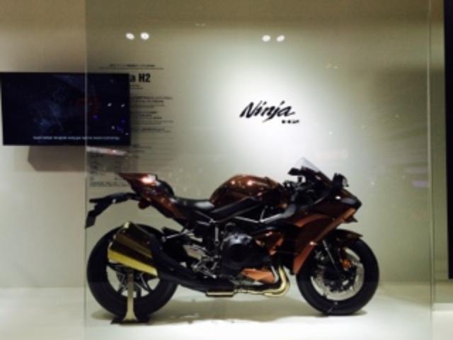画像12: <理子のいまさらTMS2015>Ninja ZX-10R ABS (福山理子)
