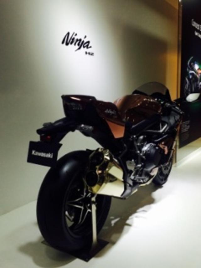 画像13: <理子のいまさらTMS2015>Ninja ZX-10R ABS (福山理子)