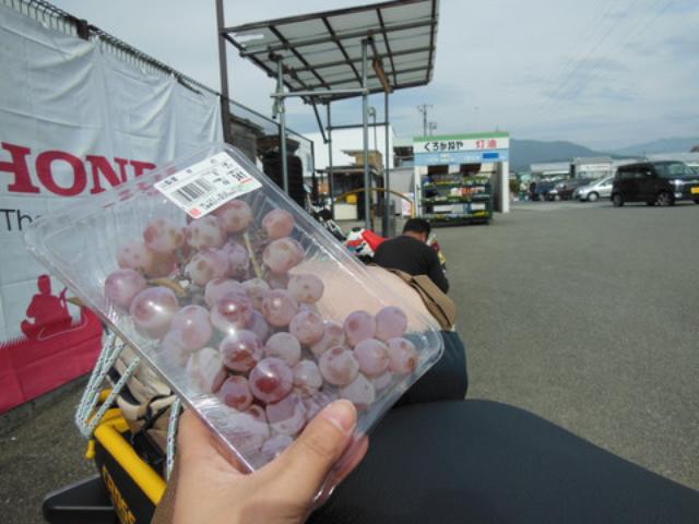画像: 待機中に、隣接しているスーパーで「甲州ぶどう」を購入。