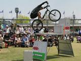 画像: (しっかし、なんでこの高さに自転車が登れるんでしょうか…。 私は高所恐怖症なので、普通に上がるのも難しいです)