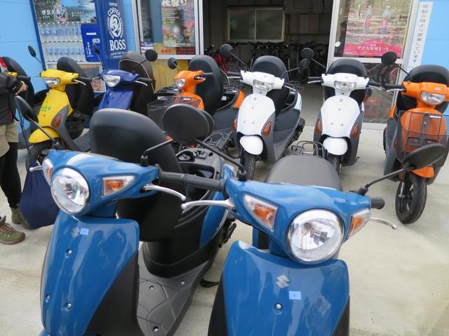 画像5: 伊豆大島をレンタルバイクでツーリングしよう!