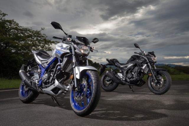 画像: 「大都会のチーター」をテーマに、ストリートを快活に駆けるスポーツバイクとして開発されたMT-25。同時に登場した兄弟車のMT-03と共通のスタイリングは兄貴分のMT-09や07のエッセンスも取り入れたもの。