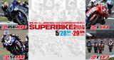 画像: 2016 MFJ全日本ロードレース選手権シリーズ 第3戦 スーパーバイクレースinもてぎ