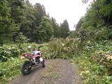 画像6: <GROMで林道>クマに注意!道東林道ツーリング2016編(その2)