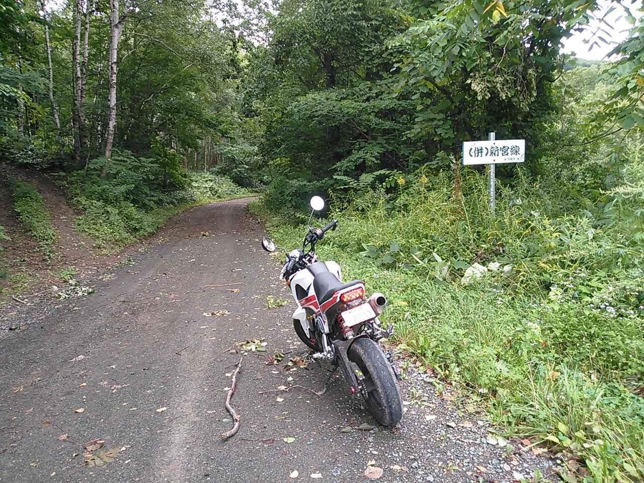 画像10: <GROMで林道>クマに注意!道東林道ツーリング2016編(その2)