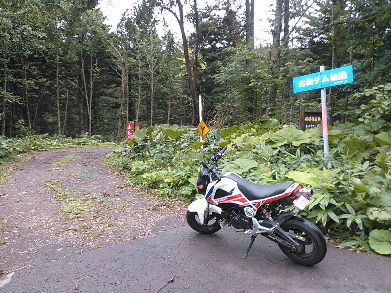 画像5: <GROMで林道>クマに注意!道東林道ツーリング2016編(その2)