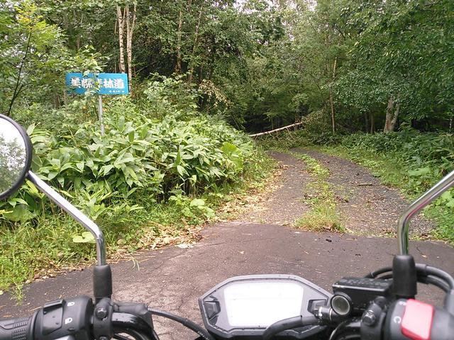画像3: <GROMで林道>クマに注意!道東林道ツーリング2016編(その2)