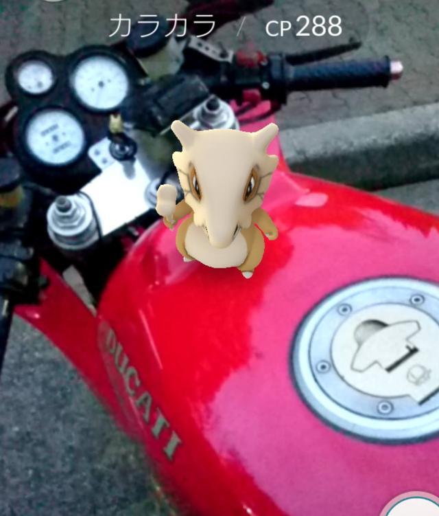 画像: バイクと2ショット。
