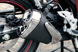 画像: スーパースポーツ風ショートマフラーを装着。シングルエンジンだが、テールエンドをデュアルタイプにすることによって、優れた排気効率も実現されている。