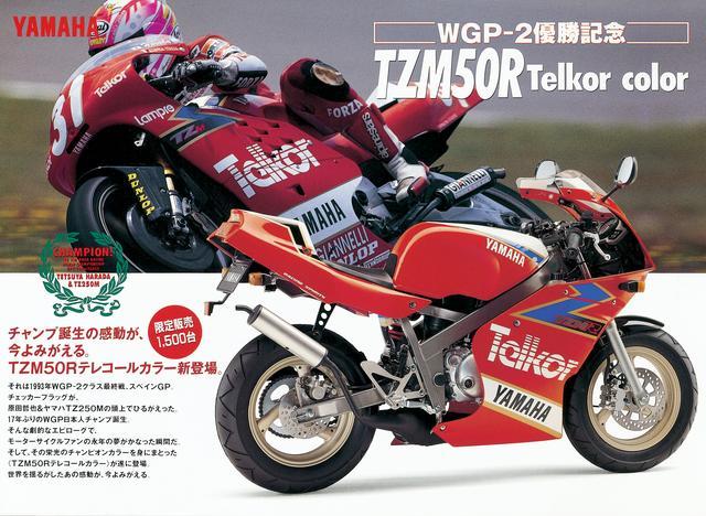 画像: 17年ぶりの日本人チャンピオン誕生記念モデル!