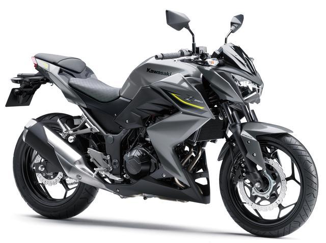 画像1: KAWASAKI Z250 ABS(メタリックグラファイトグレー) ■税込価格:55万3500円 実際のモデルにはZパターンのシートは装着されておりません。
