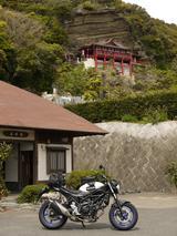 画像: 館山の大福寺(崖観音)。登ると絶景を一望出来るそうです。私は登りません、先を急いじゃいませんが、登りません。