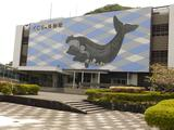 画像: 捕鯨発祥の地の太地にて、くじら博物館イン。イルカや鯨とたわむれ、鯨漁の歴史を勉強する勤勉家の私。セミクジラのキ○タマは、地球上生物イチの大きさを誇り、片キンのみで100kgに達するとか。 くじらの博物館。入場料は大人:1,500円。小中学生:800円。