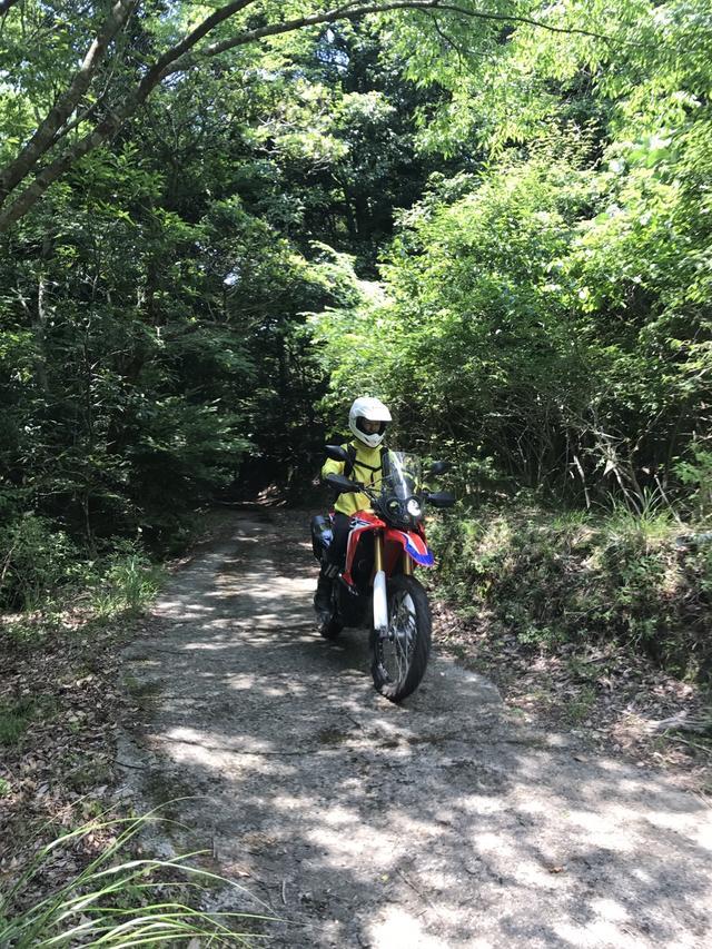 画像3: ついに、CRF250ラリーで林道に行ってきました!!
