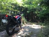 画像9: ついに、CRF250ラリーで林道に行ってきました!!