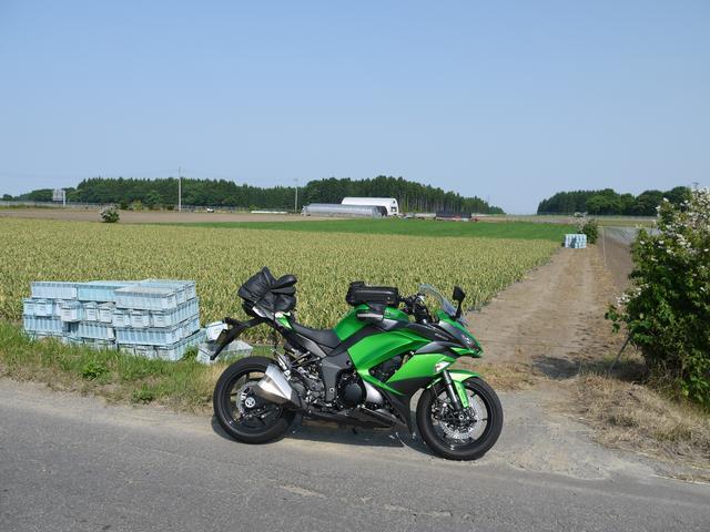 画像2: どこへ行くにも1週間、行動の全てをバイクと共に過ごすつもりでごいす! 日本全国津々浦々様々な道を往き、それぞれのシチュエーションでの挙動を、表情を、フィーリングをキャッチ&セーブ! RIDE編集部の山口銀次郎が、取材やプライベートを絡め、ひと捻りふた捻りを担当します。今週1週間共に過ごすオートバイは、新機構満載のNinja1000ABS。 オートバイRIDE編集部:山口銀次郎担当