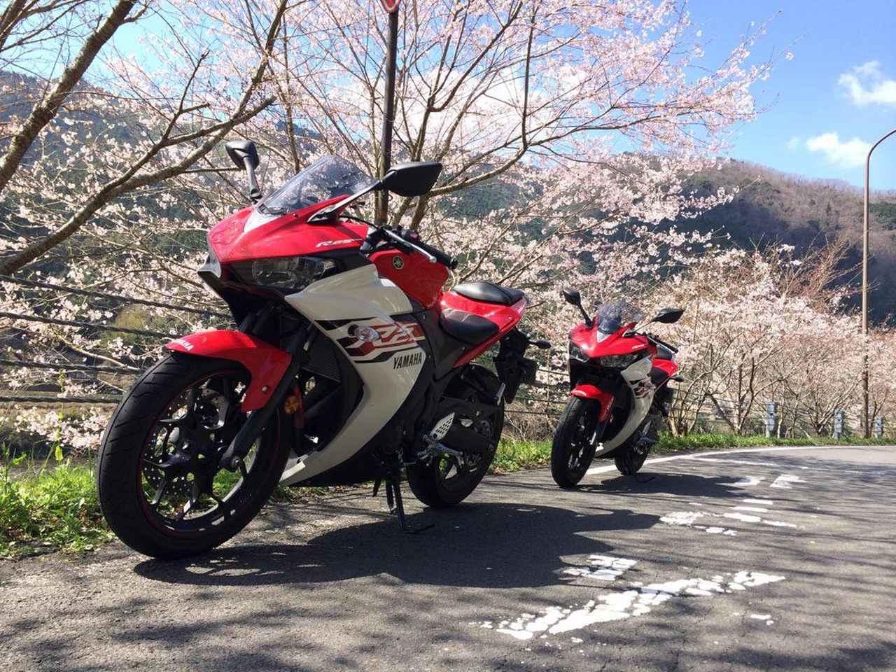 画像: YZF-R25同士で高知の方へ桜ツーリングに行った時の一枚。