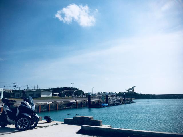 画像6: またまた、石垣島から小さな島に渡り、ひとり旅してきました( › ·̮ ‹ )