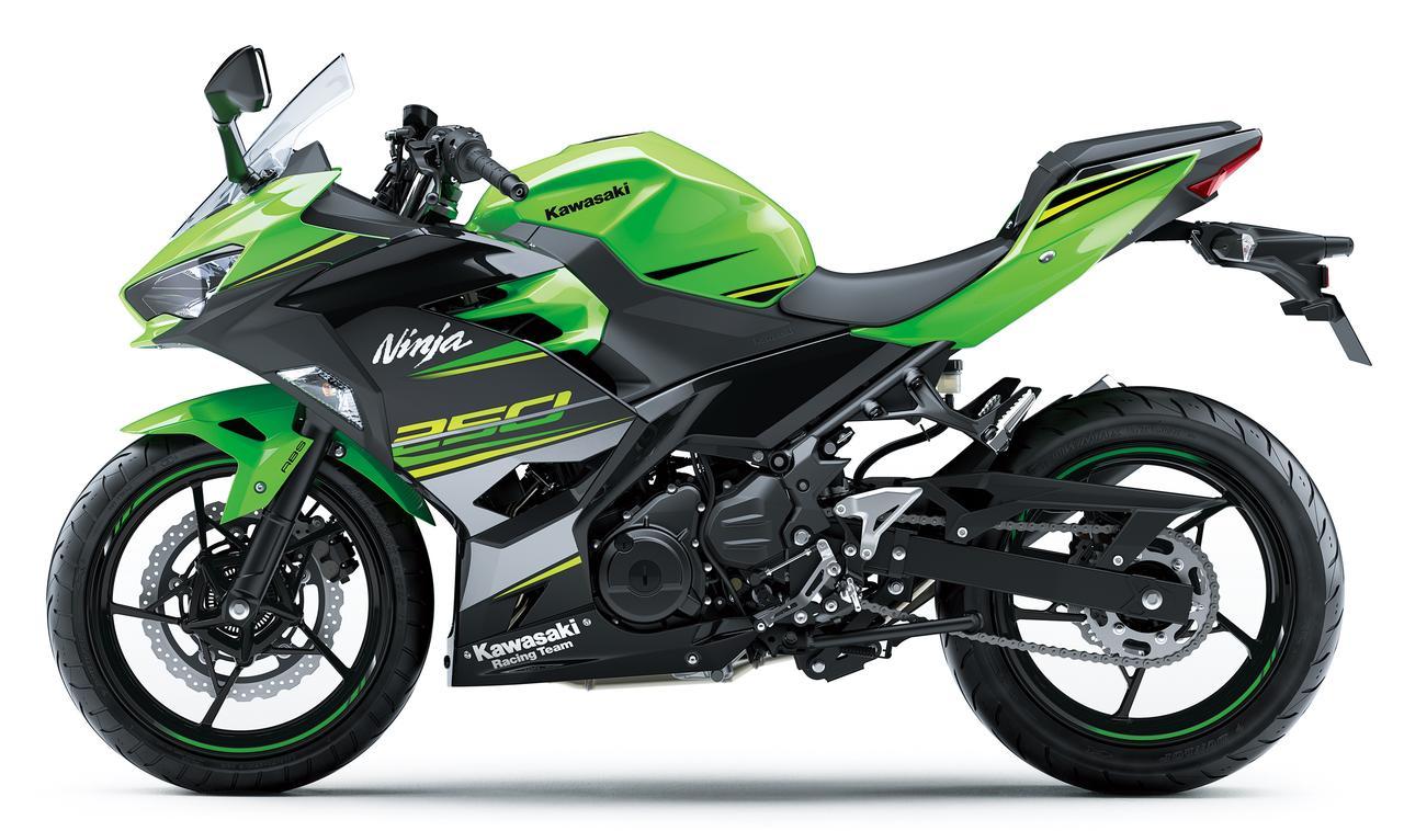 画像3: Kawasaki Ninja 250 KRT Edition(ライムグリーン×エボニー)■税込価格:640,440円