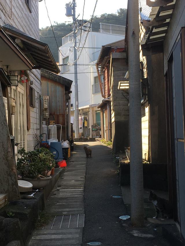 画像: それぞれの町にたくさんの 新鮮さを感じます