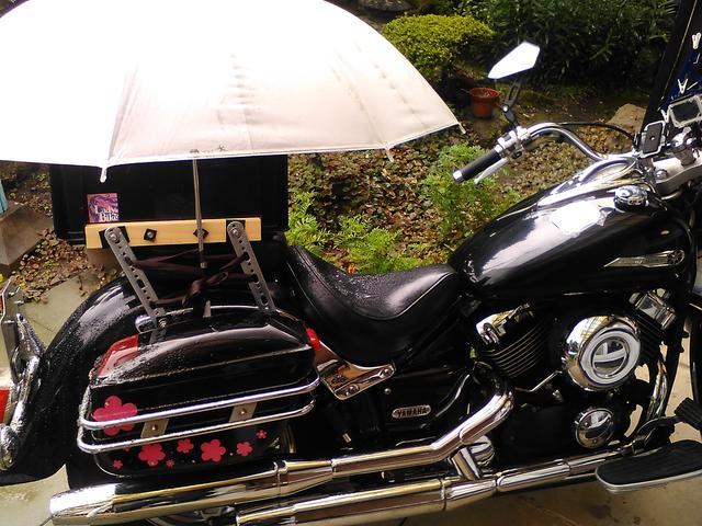画像: 「後ろが濡れたら悪いわ」と、傘をさして固定してくれたのです。かわいい....