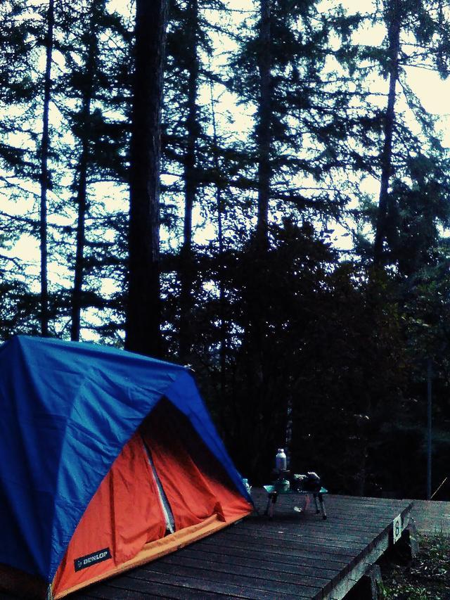 画像: 花巻市営キャンプ場。テント建てる場所がきちんとあり、フラットな床でゆっくり眠る事ができました。