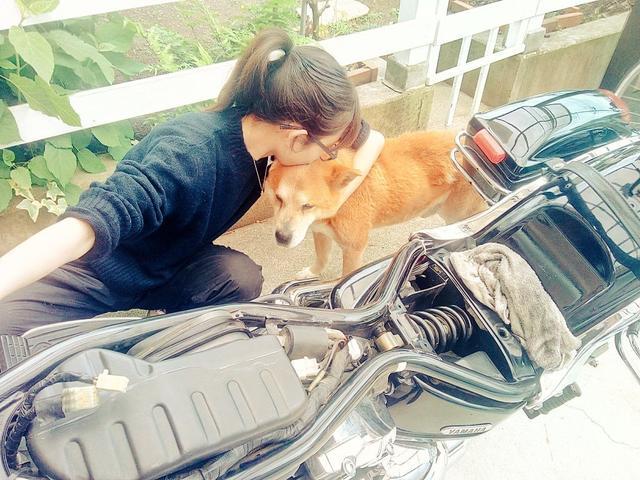 画像: この数日後には立てなくなった愛犬。けれど、バイクを弄っている時は、私の側に来てくれてたのです。