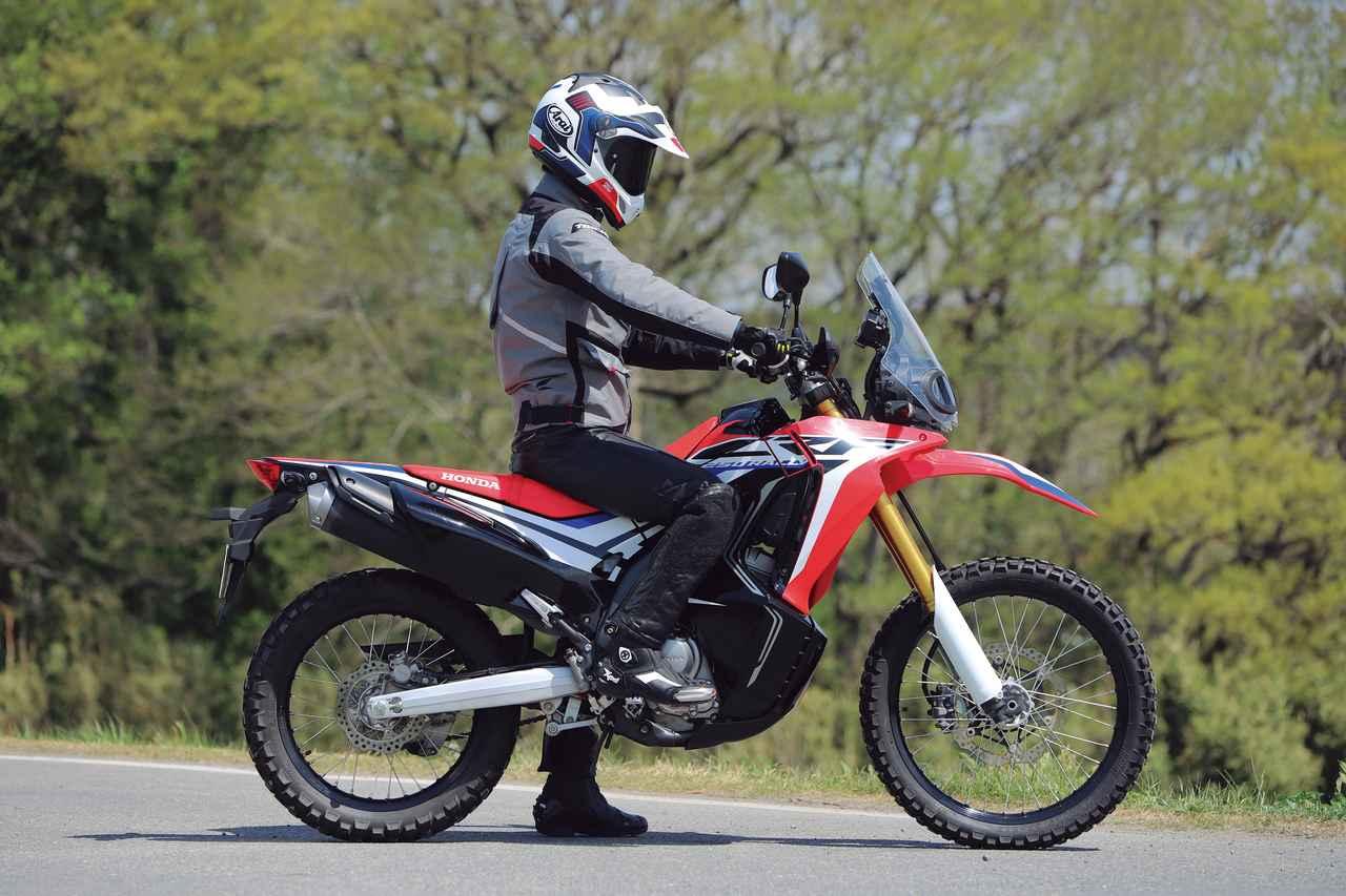 画像1: Riding Position<身長:175 cm 体重:64 kg>