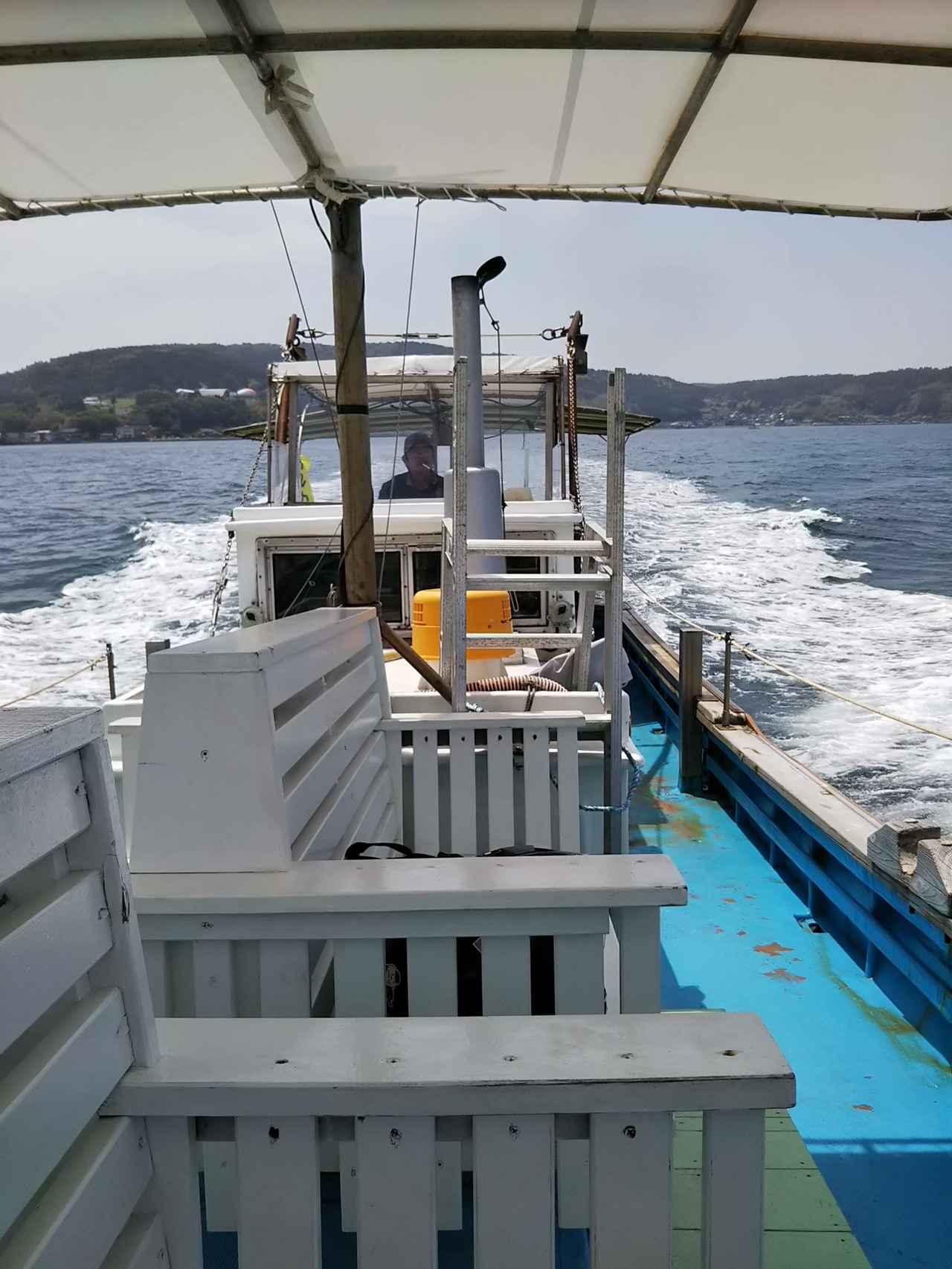 画像: 動き出してほんの10分程度で、船が止まるとイルカが近づいて来ました。 「わ〜すごい〜」船長さんはイルカは頭が良く、何にでも興味があるから近ずいてくるんだと教えてくれました。