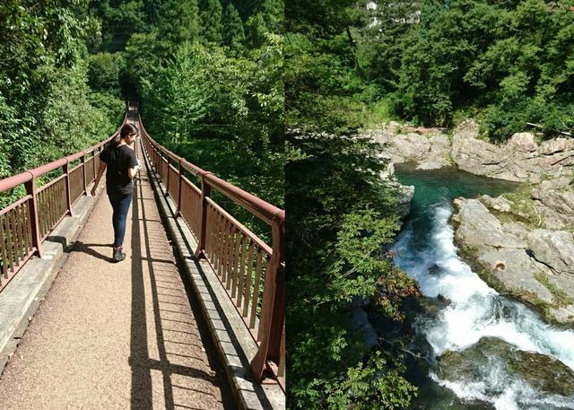 画像: 橋から周りを眺めるまどかちゃん♪自然がいっぱい。川の水も澄んでいて凄く綺麗。