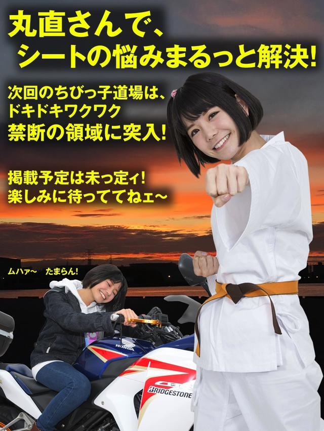 画像: 今回取材協力をしてもらった丸直さんのお問合せ先だよっ(*´ω`*)↓