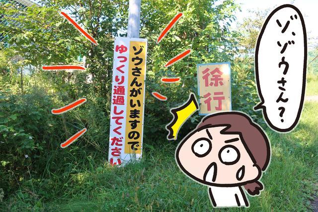 画像1: <東北でジムカーナ>エビスサーキットに行ってきました!(寺崎 愛)