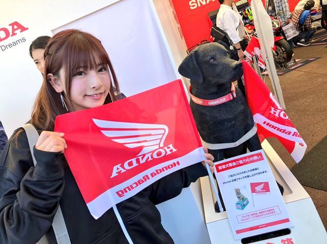 画像9: 初めてのMotoGP(日本GP)観戦を、たくさんの写真でお届けします!(葉月美優)