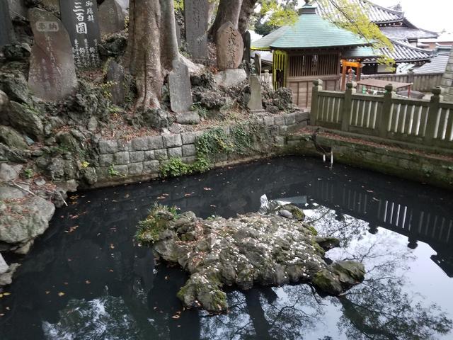 画像3: 調べたところ成田山新勝寺も16時までになっていましたが、 本堂には入れたのでお参り(*˘︶˘人)