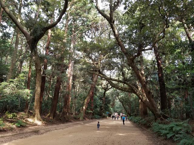 画像4: 鹿島神宮に無事到着(;_;)♡ ほっとしたわ~。