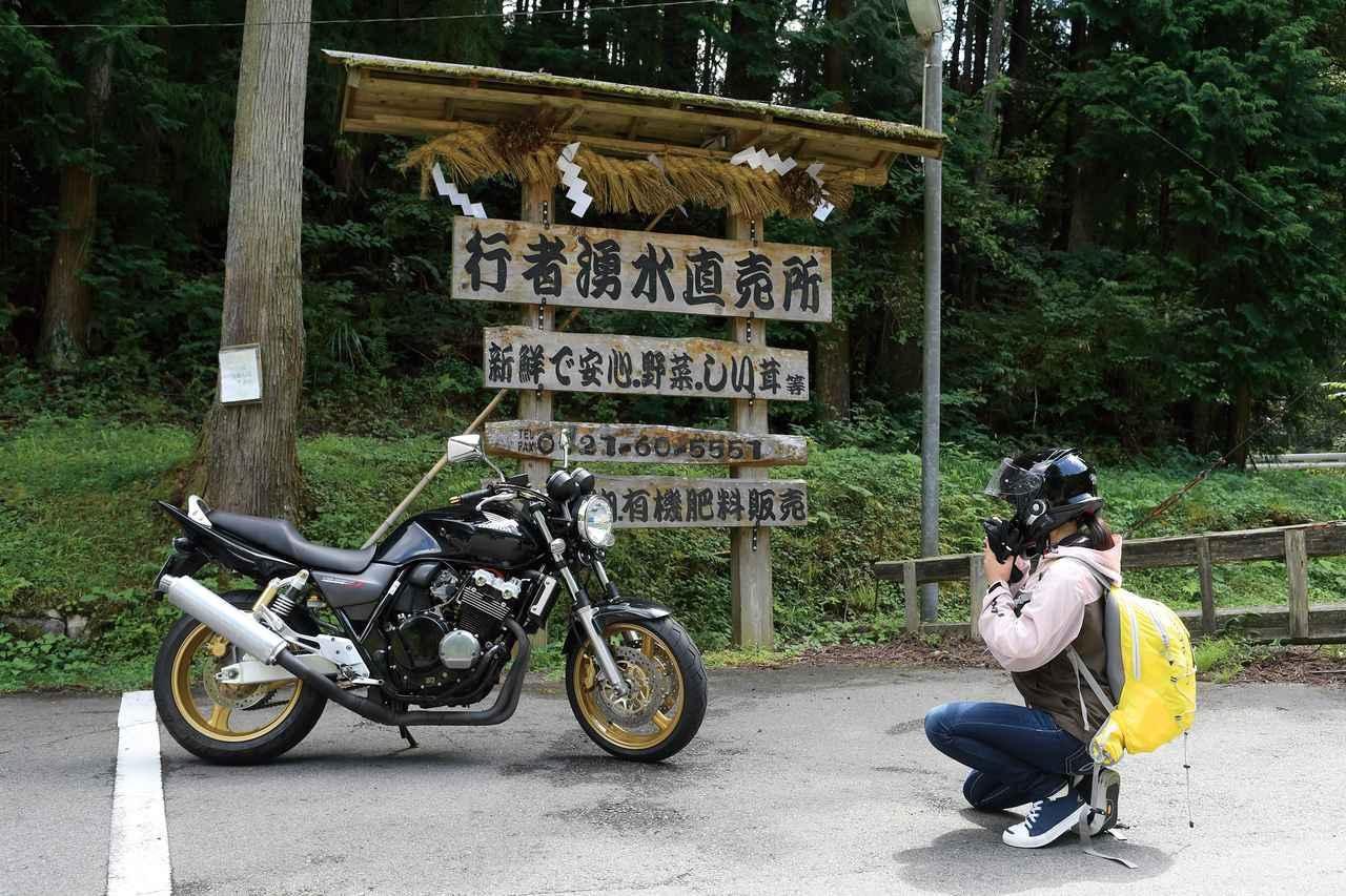 Images : 9番目の画像 - 梅日和 - webオートバイ