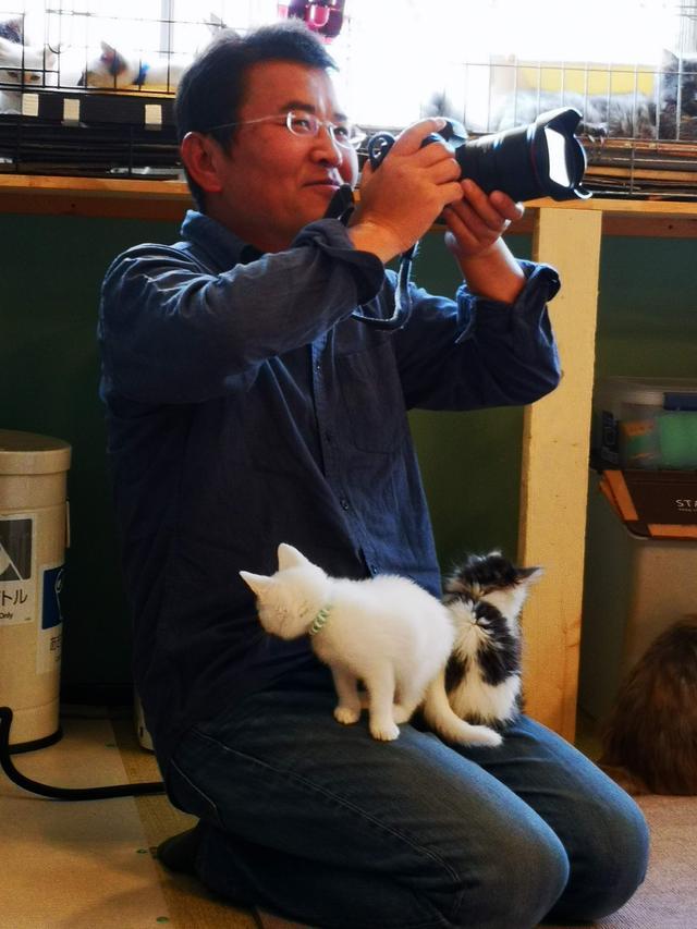 画像3: 猫カフェで癒しのひととき・・・